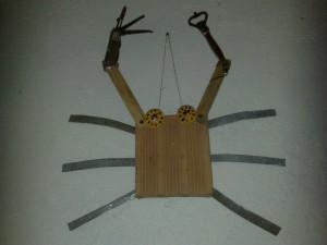 Jimmy Crab