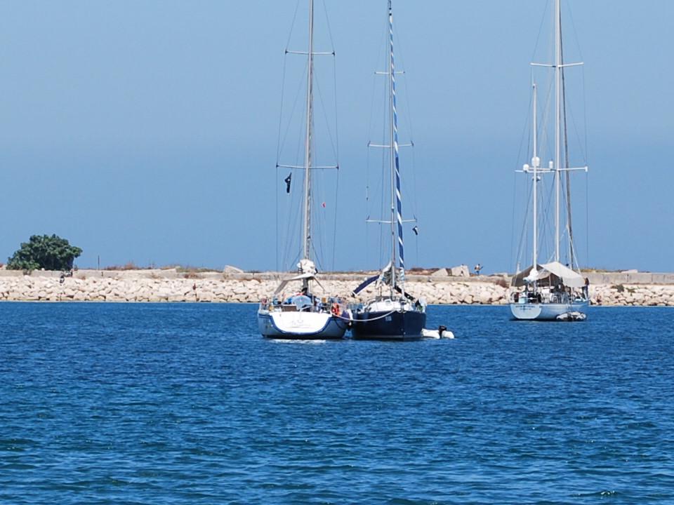 Le due barche della Rotta dei Pirati a Bizerte