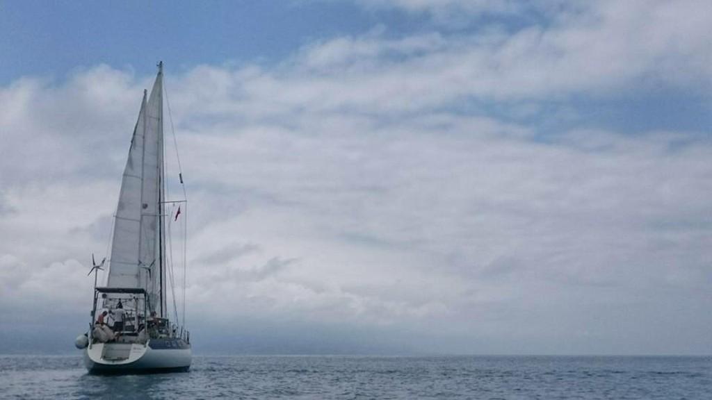 Mediterranea naviga per la Georgia